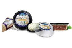 artisan deli cheeses