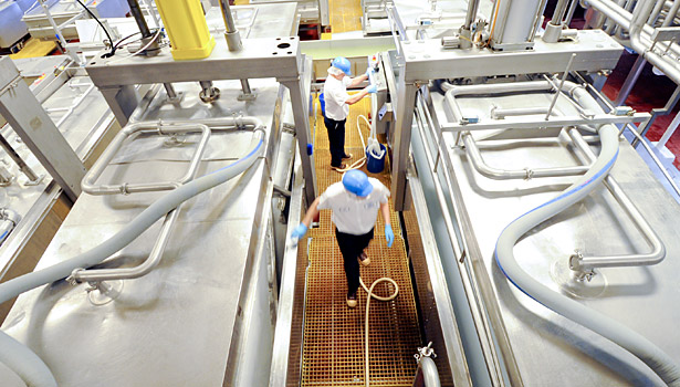 Swiss valley plant cheesemaking