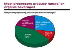Processor information chart
