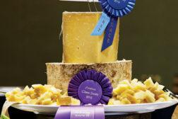 Cheese making award
