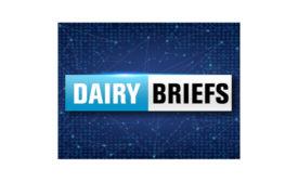 Dairy-Briefs-900-550.jpg
