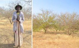 Alland-Robert-Senegal-acaica-gum-Kim-Decker-Dairy-Foods-gum-collector.jpg