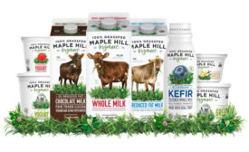 maple hill dairy