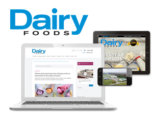 about dairy foods