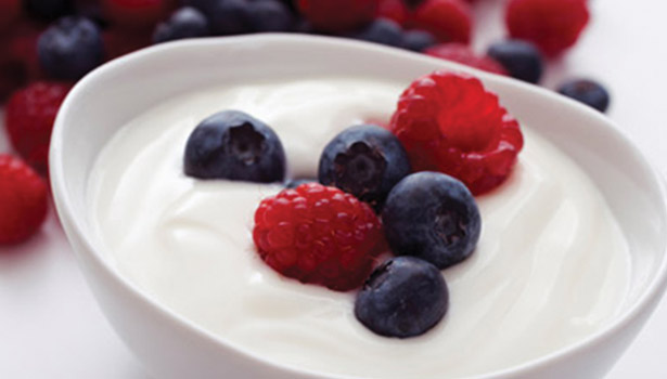 ingredient solutions for dairy processors