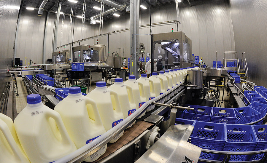 Consumer Goods Processing Plants : Voting begins for the dairy plant of year