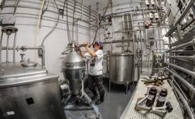 dairy plant sanitation