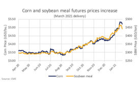Higher feed costs will ripple through dairy markets