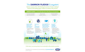 The-Dannon-Pledge-infographic