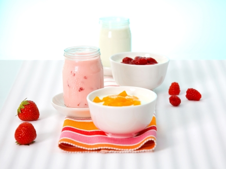 generic yogurt in a bowl from Beneo slide show size