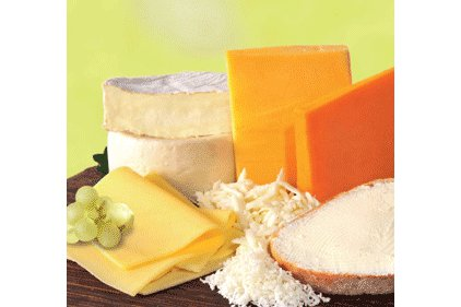 Cheese -5 Dairy Foods Feature
