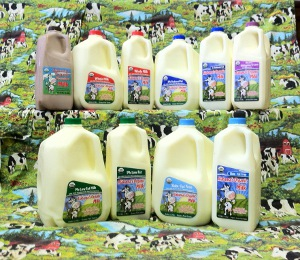 Alabama's Organic Milk and Dairy Products