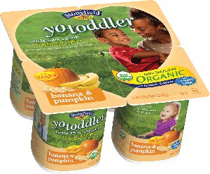 YoToddler Banana Pumpkin yogurt