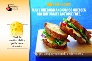 United Dairymen of Idaho lactose-free cheese