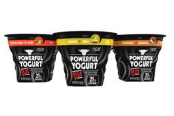 Powerful Yogurt Plus