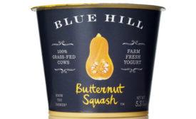 Blue Hill butternut squash yogurt