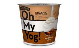 Stonyfiled Oh My Yog New England Maple
