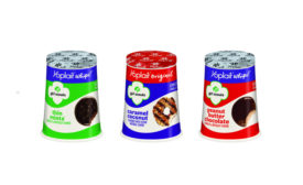 Yoplait Girl Scout Cookie yogurt flavors