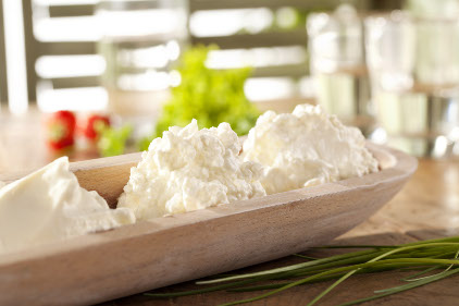 DSM Cottage cheese image - feature