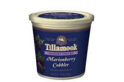 Tillamook dessert yogurt Marionberry