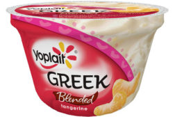 Yoplait Greek yogurt tangerine