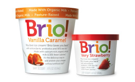 Brio Ice Cream pints and single serve
