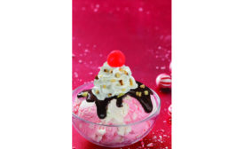 Baskin-robbins December seasonal flavors
