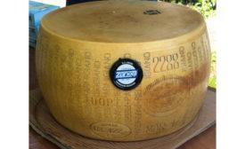 Schuman Cheese Cheesefest